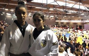 France 2° division FFJ (cadets - espoirs)